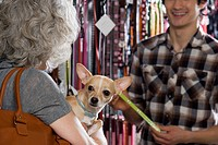 Woman and chihuahua in pet shop