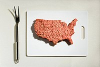 America made out of minced meat (thumbnail)