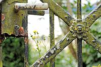 Weathered garden gate _ close up