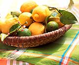 Basket with lemons and limes