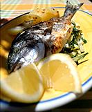 Fish with lemon sauce