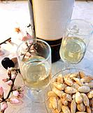Jerez Fino and almonds