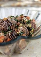 Snail, tapas, tomatoes and herbs