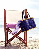 Beach chair and beach bag