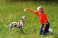 woman with Dalmatian dog _ playing on meadow