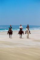 three Arabian horses with riders at the beach