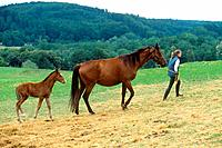Sarvarer and foal with woman (thumbnail)