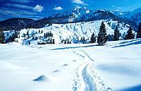 Bavaria : landscape _ snow