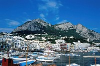 Boats at harbor, Marina Grande, Campania, Italy