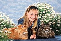 girl with two Maine Coons