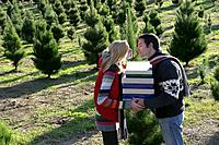 Young couple about to kiss at Christmas tree field (thumbnail)