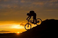 Silhouette of man mountain biking at sunset