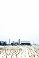 Canada, Ontario, farm in winter