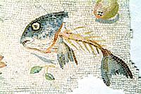 Roman mosaic in the ancient Roman city of Aquileia in northern Italy. This mosaic, from the 1st century AD is called an Asaraton oikos, meaning ´unswe...