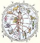 Medical zodiac. 15th century diagram with Greek text illustrating how the human body relates to the zodiac signs. Such information was used in medical...
