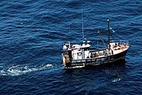 Fishing boat trawling for fish. Trawling is a method of fishing that involves pulling a fishing net through the water behind one or more boats. Photog...