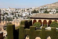 Alhambra and Albaicin district in background, Granada. Andalucia, Spain