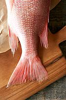 Red snapper tail