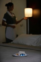 Maid cleaning hotel room