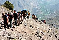 A trekking group and mules hiking from Aremd to the col Tizi Mzic, Atlas Mountains, Toubkal Region, Morocco, North Africa