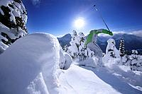 Skier in deep snow, Lake Louise, Alberta, Canada