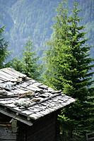 Wooden cabin in against wood and mountains, Hohe Tauern National Park, Carinthia, Austria