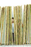 Brother and sister standing behind bamboo, boy smiling at camera, girl hiding (thumbnail)