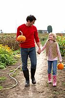 Father and daughter with organic pumpkins walking in farm fields, Ladner, British Columbia