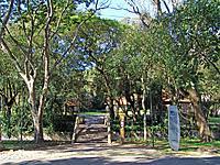 curitiba tingui park natural view