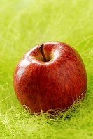 Red delicious apple in the grass