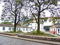 ouro preto mg green trees and plants on a square garden