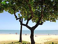 fortaleza people enjoying the beach