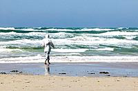 Woman walks on beach, stormy weather, Jutland, Denmark