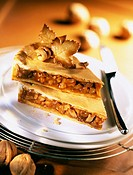 Caramelized hazelnut and walnut tart