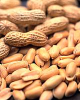 Closed Up Image of a Large Group of Peanuts, High Angle View