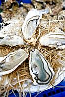 Opened oysters on a market stall