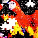 a macaw picture in puzzles