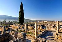 Morocco, Volubilis, Roman city founded in 40 BC, classified as World Heritage by UNESCO