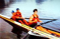 people rowing using oars