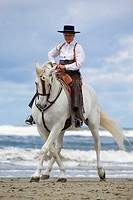 andalusian horse with horsewoman _ on the beach
