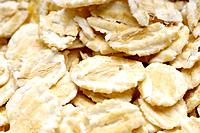 Oats close_up
