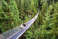 Canada, North America, America, North Vancouver, British Columbia, North America, Capilano Suspension Bridge, crossing