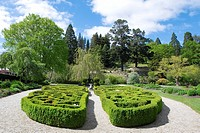 Formal garden, elevated view