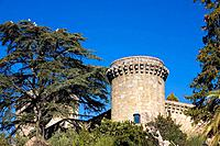 Parador Nacional (state-run hotel), old castle dating from 15th c., former residence of King Charles V, Jarandilla de la Vera. Cáceres province, Extre...