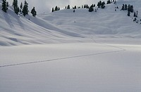 Snow shoe tracks across Rainbow lake, Whistler BC