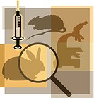 Montage illustration about animal testing containing a rat, rabbit, microscope, magnifying glass, and syringe