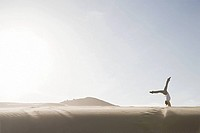 Woman doing handstand in desert