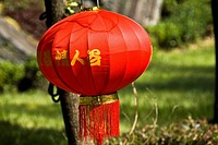 Close_up of a Chinese lantern, Emerald Valley, Huangshan, Anhui Province, China