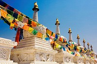 Buntings on a temple, HohHot, Inner Mongolia, China