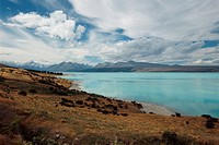 New Zealand _ South Island _ Aorangi _ Lake Pukaki _ Mt Cook in background